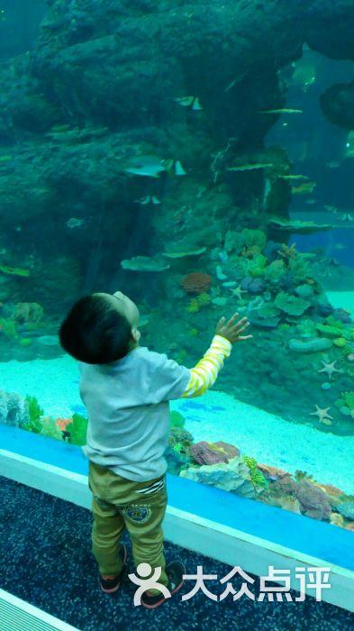 浩海立方海洋馆图片 - 第1张