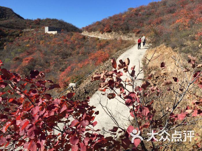 西達摩自然風景區-圖片-北京景點-大眾點評網