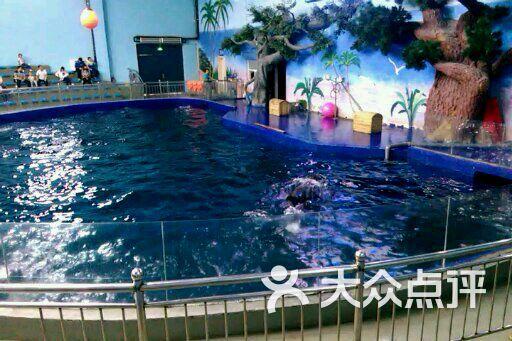 石家庄动物园海洋馆图片 - 第1张